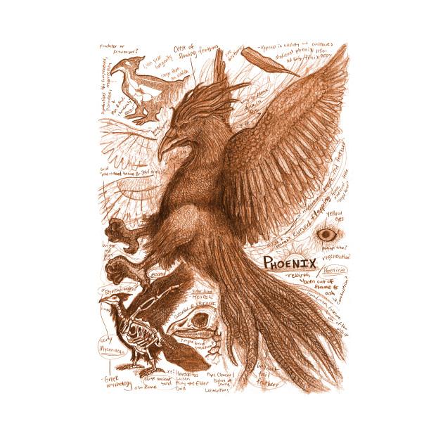 Egertron Puck's Orange Phoenix Anatomy Illustration
