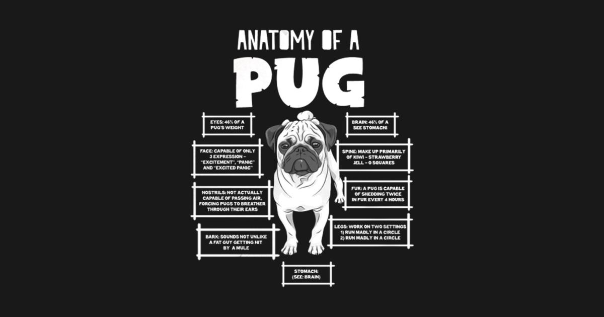 ANATOMY OF A PUG T SHIRT - Pug Pug Pug Life Pug Not Drugs Pug Mens ...