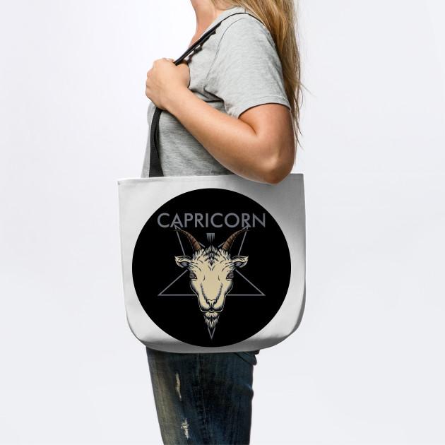 CAPRICORN ZODIAC SIGN TEST Astrology T-Shirt Hoodie Mug Sticker Magnet Gift for Astrologist