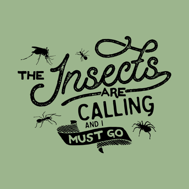 The Insects Are Calling And I Must Go