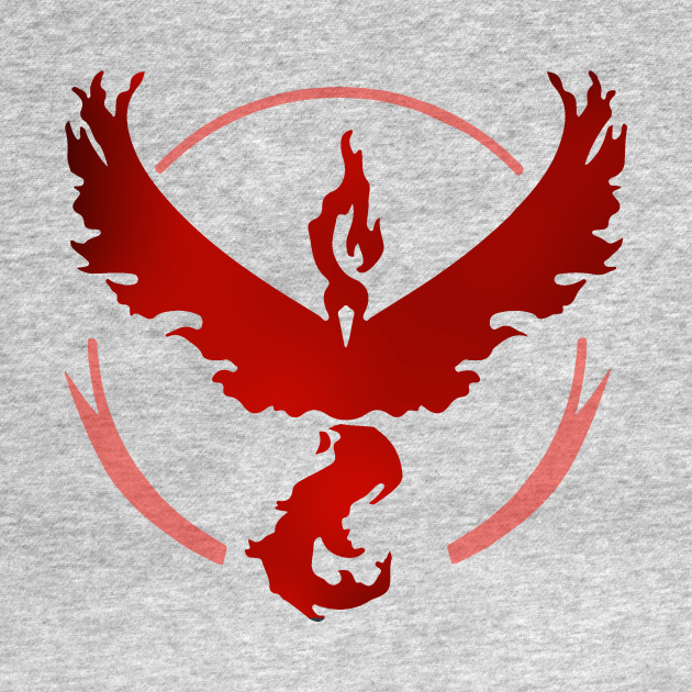 Team Valor and Proud