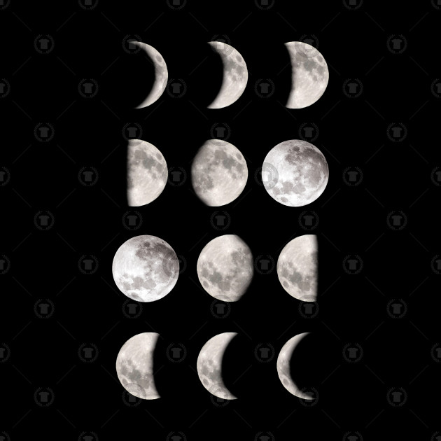 12 Phases Of The Moon