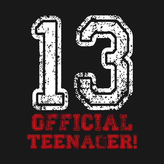 13 Years Old Official Teenager Gift 13th Birthday