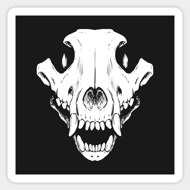 Wolf skull wolf skull