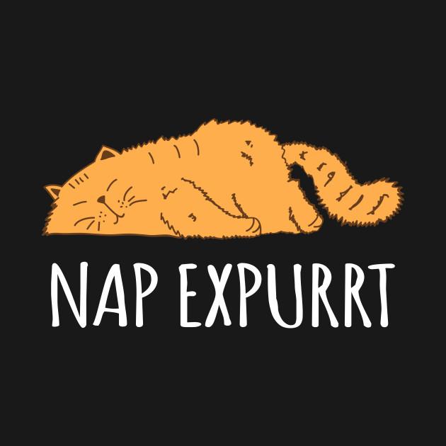 Nap Expert