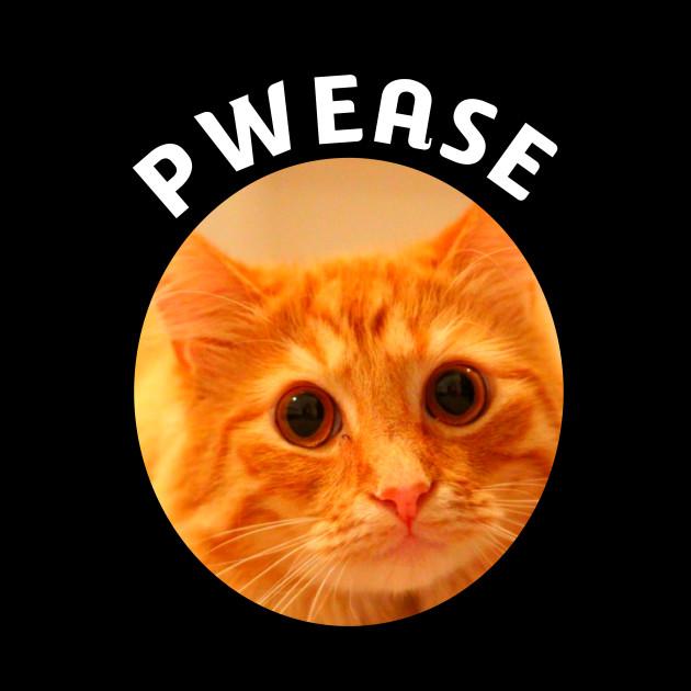 Sad Cat Face Pwease Funny Cat Meme - Sad Cat Crying Cat ...