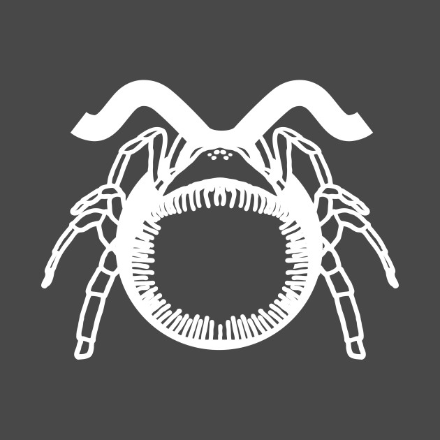 Zodiac Spiders : Taurus