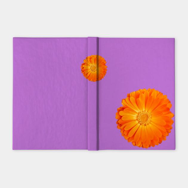 Orange Flower on funky purple background