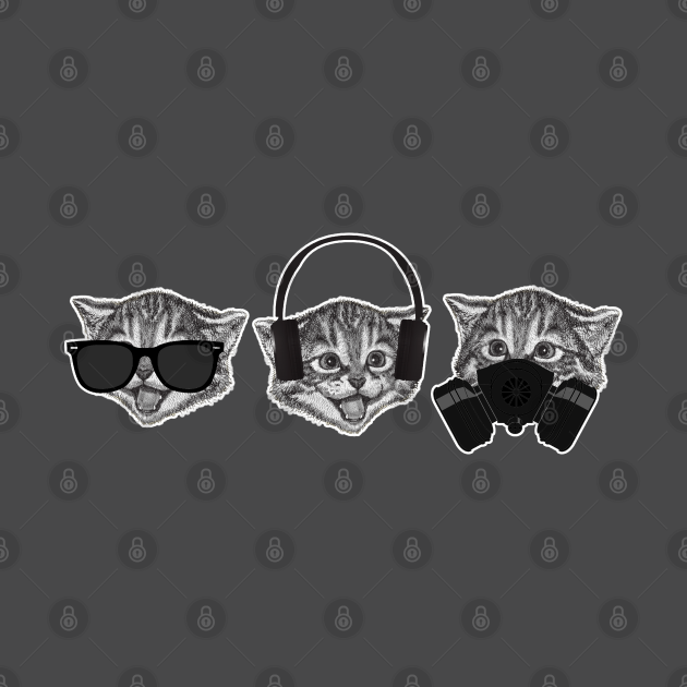 Three Wise Cats Meme Funny