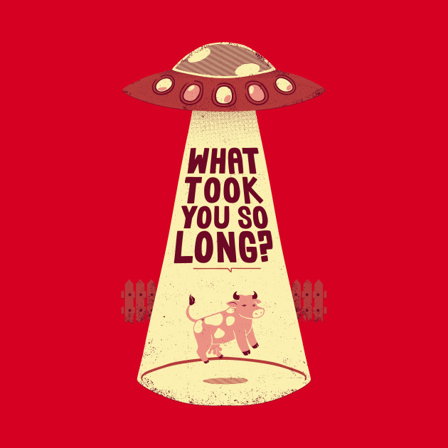 Why Did You Took So Long Alien Funny T-shirt