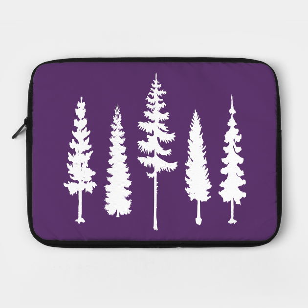 Pine trees forest
