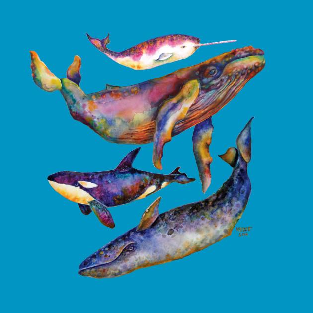 Four Whale Quartet - A Quartet of Whales