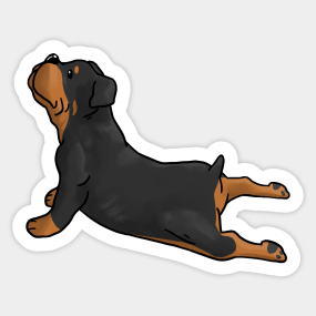 Cool Rottweiler Chubby Adorable Dog - 2520532_0  2018_708687  .com/teepublic/image/private/s--Rtoye9VX--/t_Resized%20Artwork/c_fit,g_north_west,h_1054,w_1054/co_ffffff,e_outline:53/co_ffffff,e_outline:inner_fill:53/co_bbbbbb,e_outline:3:1000/c_mpad,g_center,h_1260,w_1260/b_rgb:eeeeee/c_limit,f_auto,h_285,q_90,w_285/v1521795421/production/designs/2520532_0