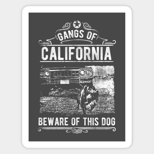 Gangs of California: Beware of Dog Vintage Design