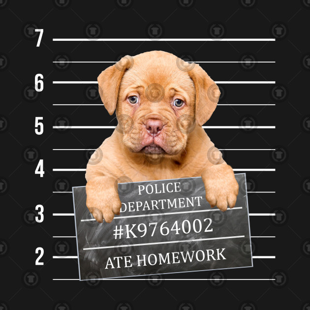 Cute Puppy Dog Mug Shot Graphic. Puppy Ate Homework.