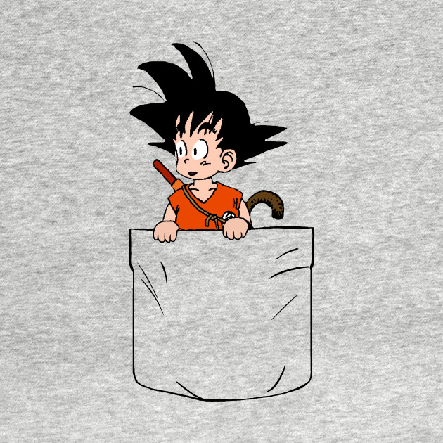 Pocket DBZ