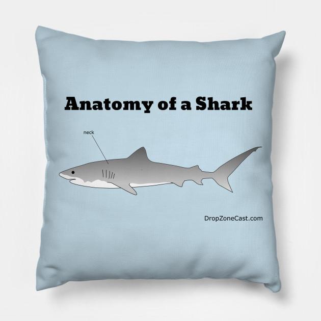 Anatomy of a Shark - Anatomy Of A Shark - Pillow | TeePublic