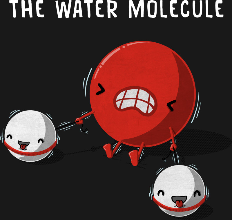 The Water Molecule - Atoms - T-Shirt | TeePublic