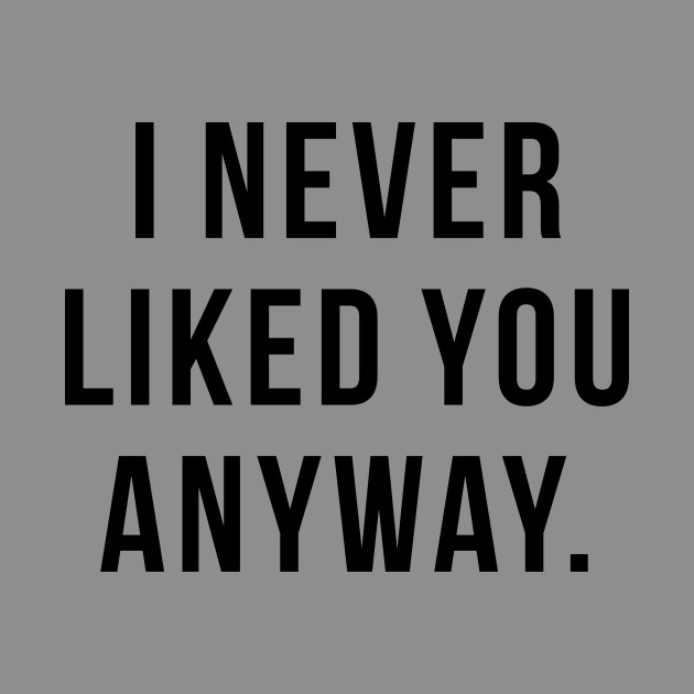 I Never Liked You Anyway Funny Hoodie Teepublic