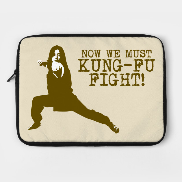 Now We Must Kung Fu Fight