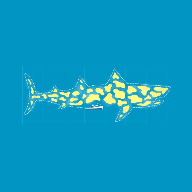 Looking For The Jaguar Shark