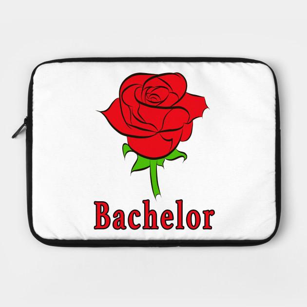 Beautiful bachelor rose as a flower Love Love