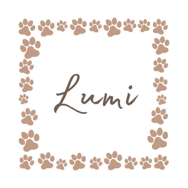 Pet name tag - Lumi