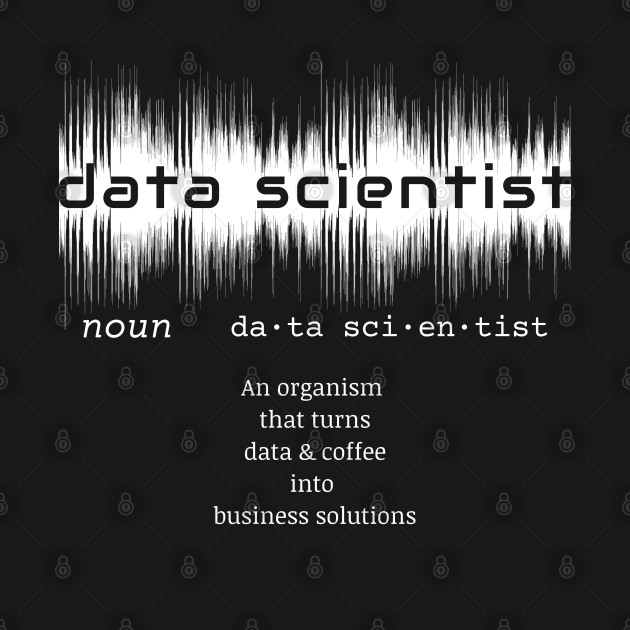 Data Scientist Dictionary Definition | Data Waves Black
