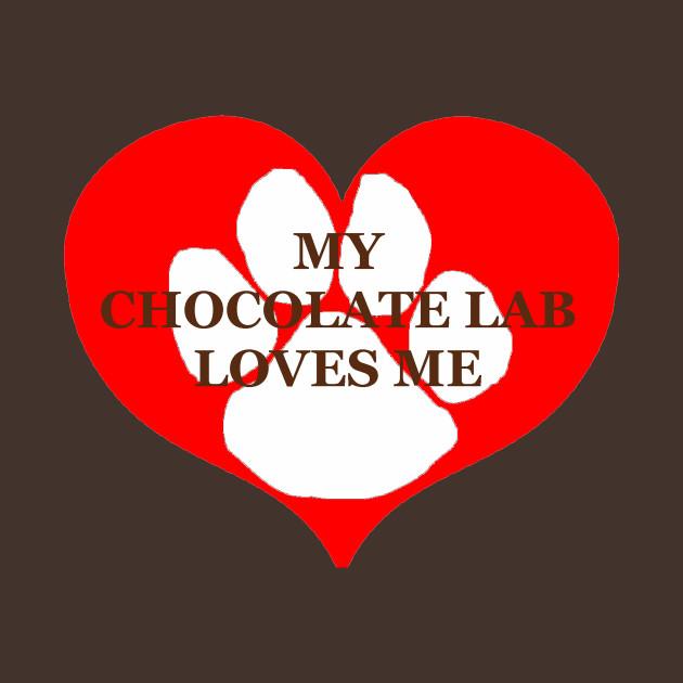 My chocolate lab loves me