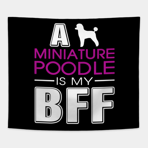 Miniature Poodle gift t-shirt for dog lovers