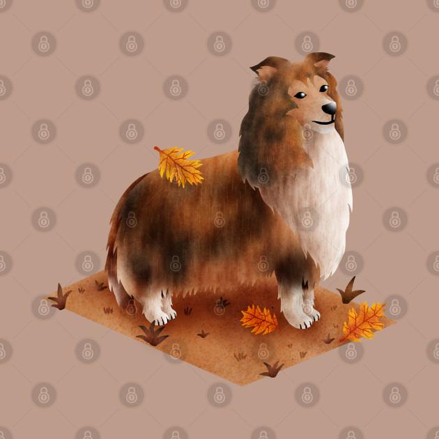 Rough Collie (Shetland Sheepdog)