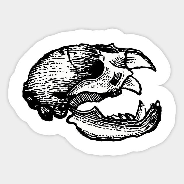 animal skull art sticker teepublic