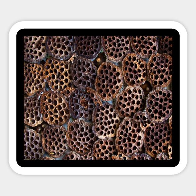 Trypophobia Trypophobia Sticker Teepublic