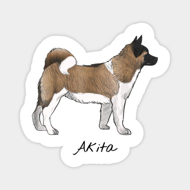 Akita Magnet