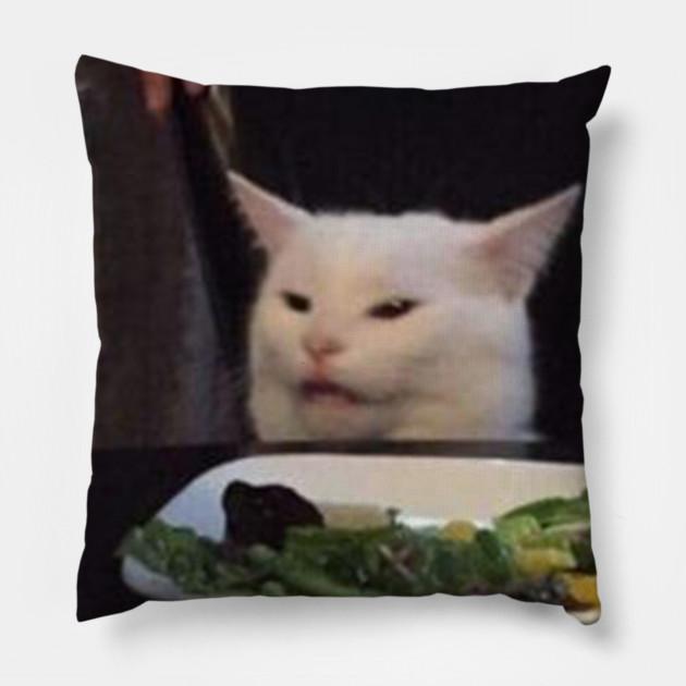 confused cat meme - cat