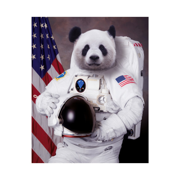 Pandastronaut