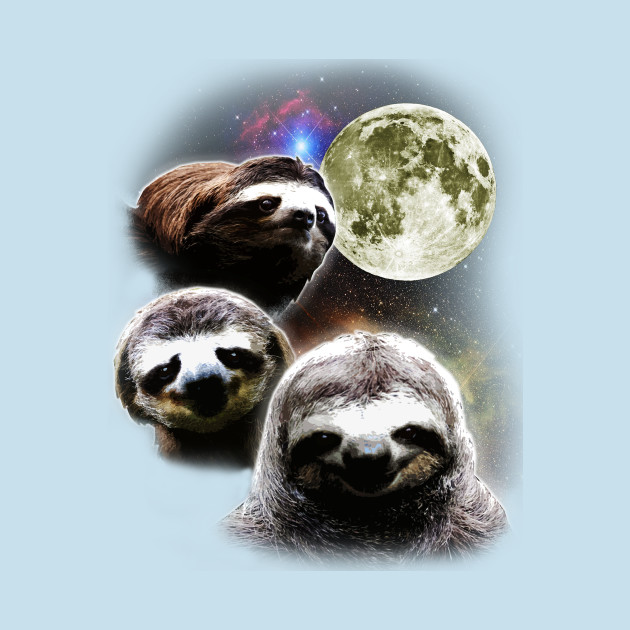 Funny Space Sloths