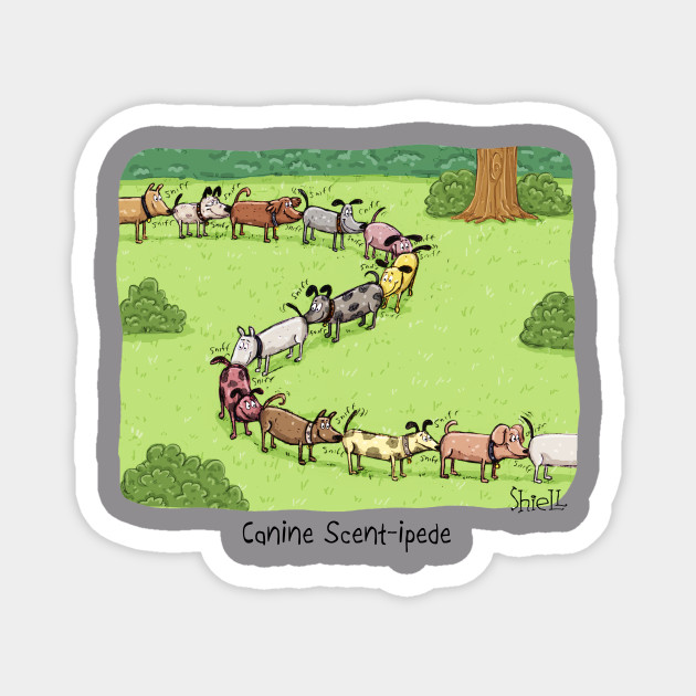 Canine Scent-ipede