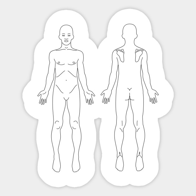 Limited Edition Exclusive Male Anatomy Front And Back Line Art