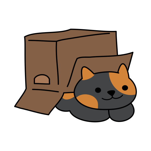 Box Clever Kitty