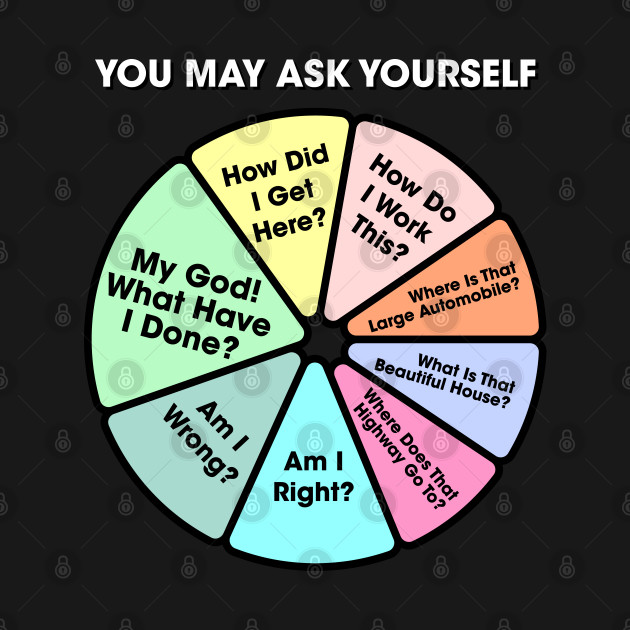 Once In A Lifetime - You May Ask Yourself Pie Chart