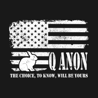 c34e1ba66de Q Anon The Choice To Know Will Be Yours T-Shirt