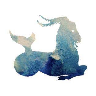 Capricorn Horoscope T-Shirts | TeePublic
