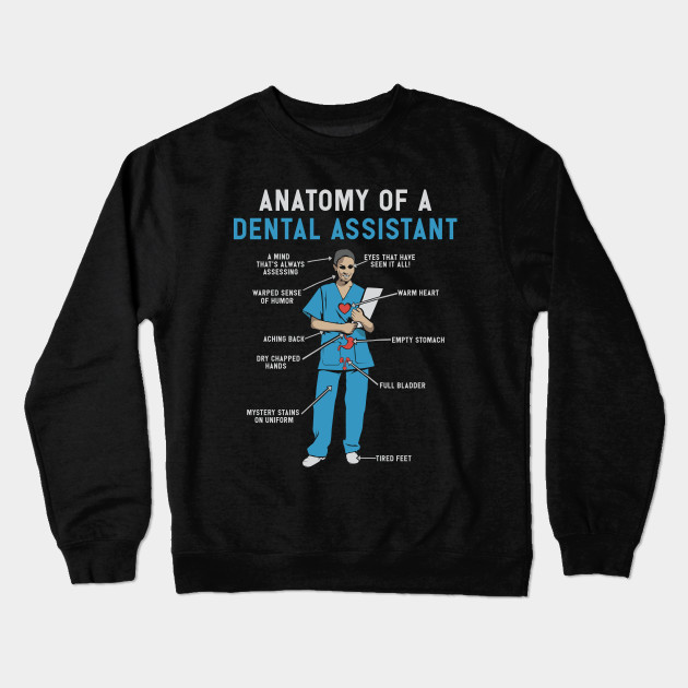 41d21787 Anatomy of Dental Assistant T-Shirt and Gifts - Funny Dental Assistant Gift  Crewneck Sweatshirt