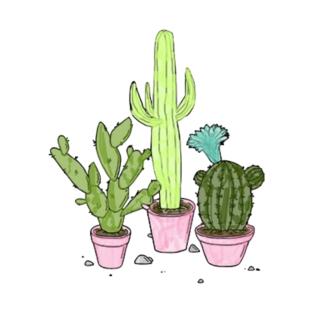 cactus t-shirts