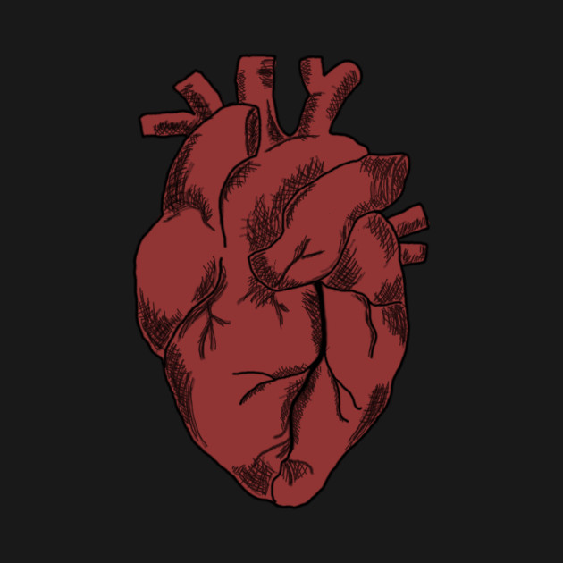 Anatomical Heart - Heart - T-Shirt | TeePublic