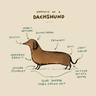 Anatomy of a Dachshund t-shirts