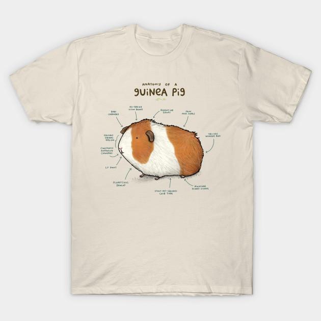Anatomy of a Guinea Pig - Guinea Pig - T-Shirt | TeePublic