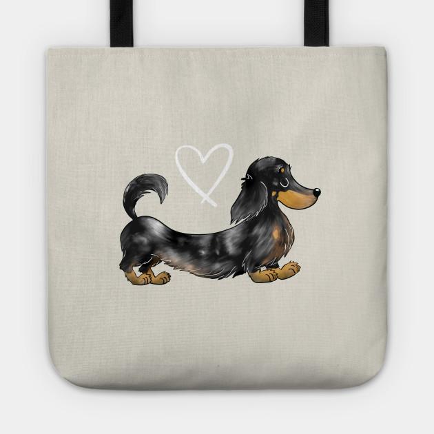 Dachshund Black and Tan dapple long haired sausage dog