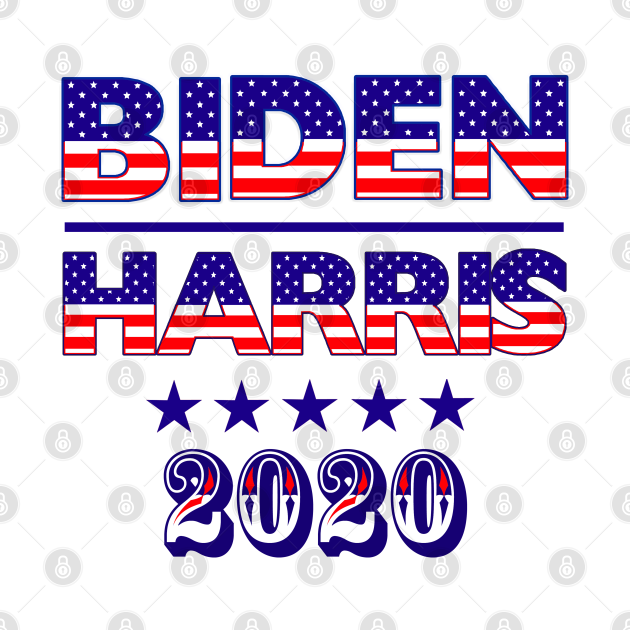 Biden Harris 2020 USA Flag Text, TPSD